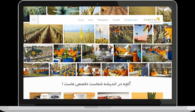 طراحی سایت شرکتی ارزان در مشهد