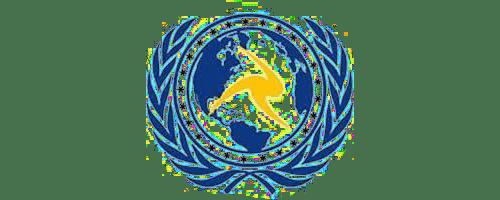 کنسرسیوم بینالمللی بادران پارس نیرو